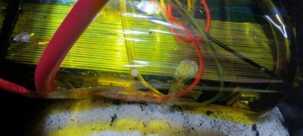 リン酸鉄リチウムイオンセルにハンダ付けが多い、そしてバスバーは確認できるがボルト締めでは無い!ハンダクラックが心配です